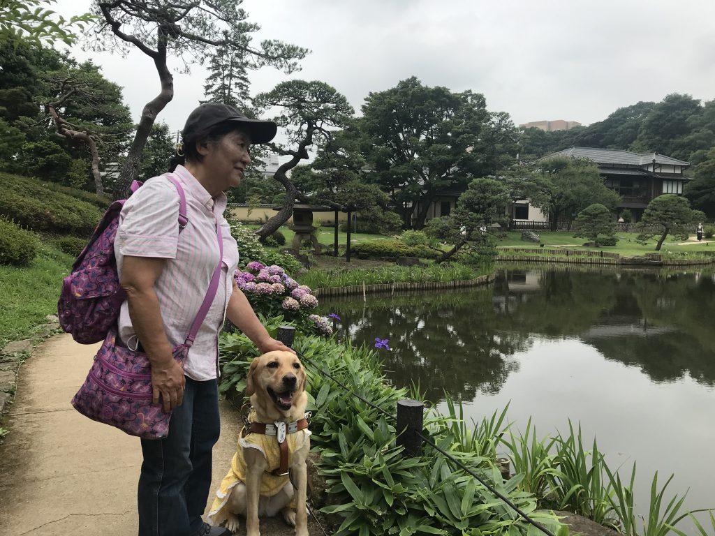 肥後細川庭園の写真