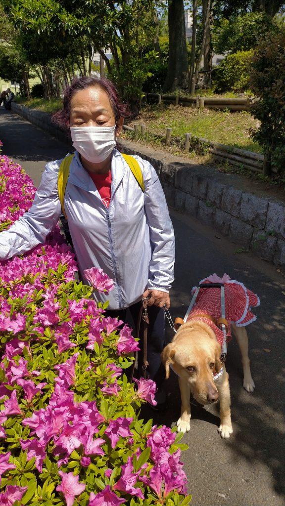 【写真】つつじの花の前で